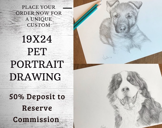 Pet portrait drawing 19x24 50% inital deposit to reserve commission