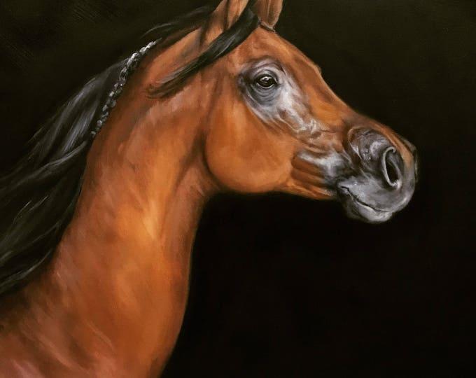 original Horse oil painting Nicolae Art Nicole Smith Artist Equine Art Bay Arabian Horse on black background