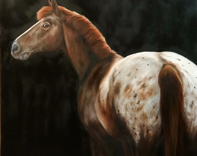 """Nicole Smith Original Artist Horse Oil Painting on canvas Art Equine Appaloosa """"Judgy Appy"""" 24x24"""