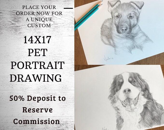 Pet portrait drawing 14x17 50% inital deposit to reserve commission