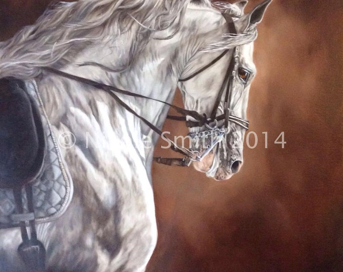 "Horse Art Print High Quality Equine art ""Andalusian Templado"" 14x14"