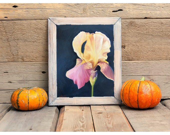Original Flower oil painting Yellow Magenta iris by Nicole Smith 8x10