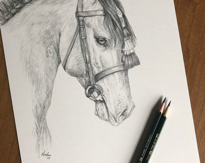 Orignial horse pencil drawing by equine artist Nicole Smith Dressage art graphite sketch size 9x12