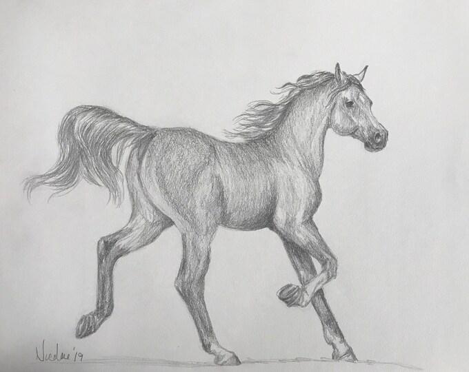 Orignial horse artwork Nicolae Art equine artist Nicole Smith graphite pencil sketch 9x12