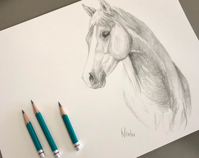 Orignial horse pencil drawing by equine artist Nicole Smith Palomino art graphite sketch size 9x12