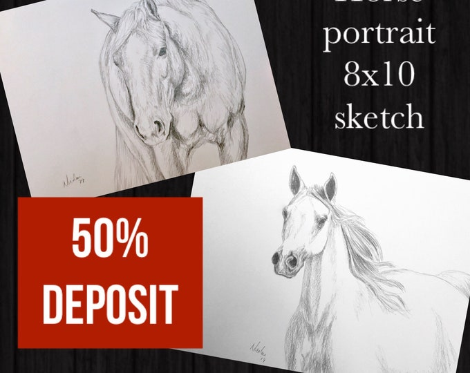 Custom Horse drawing 8x10 50% initial deposit to reserve art commission