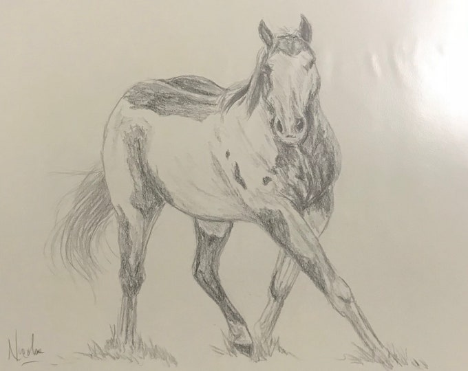 Orignial horse artwork Nicolae Art Nicole Smith equine artist graphite pencil sketch 8x10