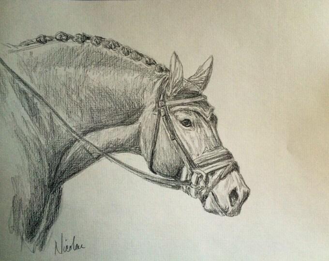 Orignial horse artwork Nicolae Art Nicole Smith artist graphite pencil sketch 8x10 dressage horse