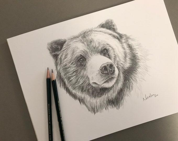 Original bear pencil drawing Nicolae Art artist Nicole Smith sketch 9x12