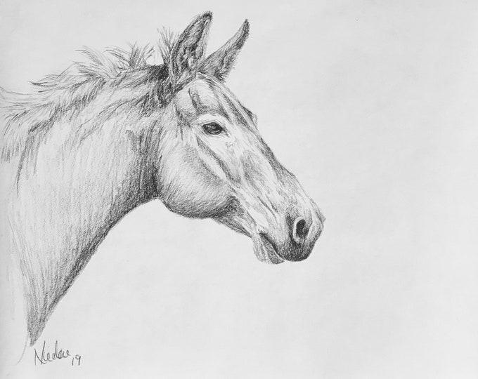 Orignial horse artwork Nicolae Art equine artist Nicole Smith graphite pencil sketch 8x10
