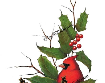 Christmas Clip Art: Cardinal Bird, Hand Drawn Clipart Holly, Berries, Pine Cones, Twigs, Holiday Clipart,   Instant Download, jpg, gif files