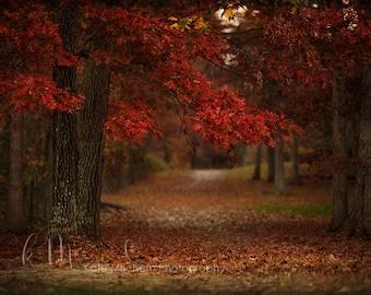 Digital Fall Background