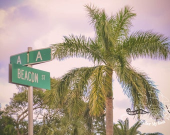 Beacon Street Photograph - Sign - Nautical - Beach - Palm Trees - Print - Wall Art