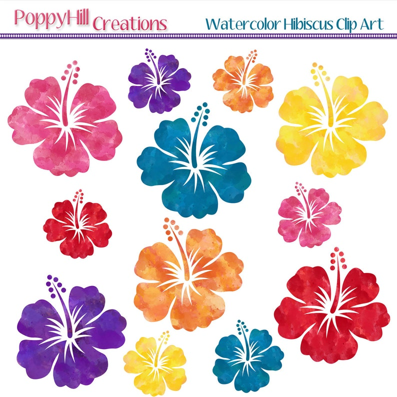 Instant Download Watercolor Hibiscus Digital Clip Art Red Etsy