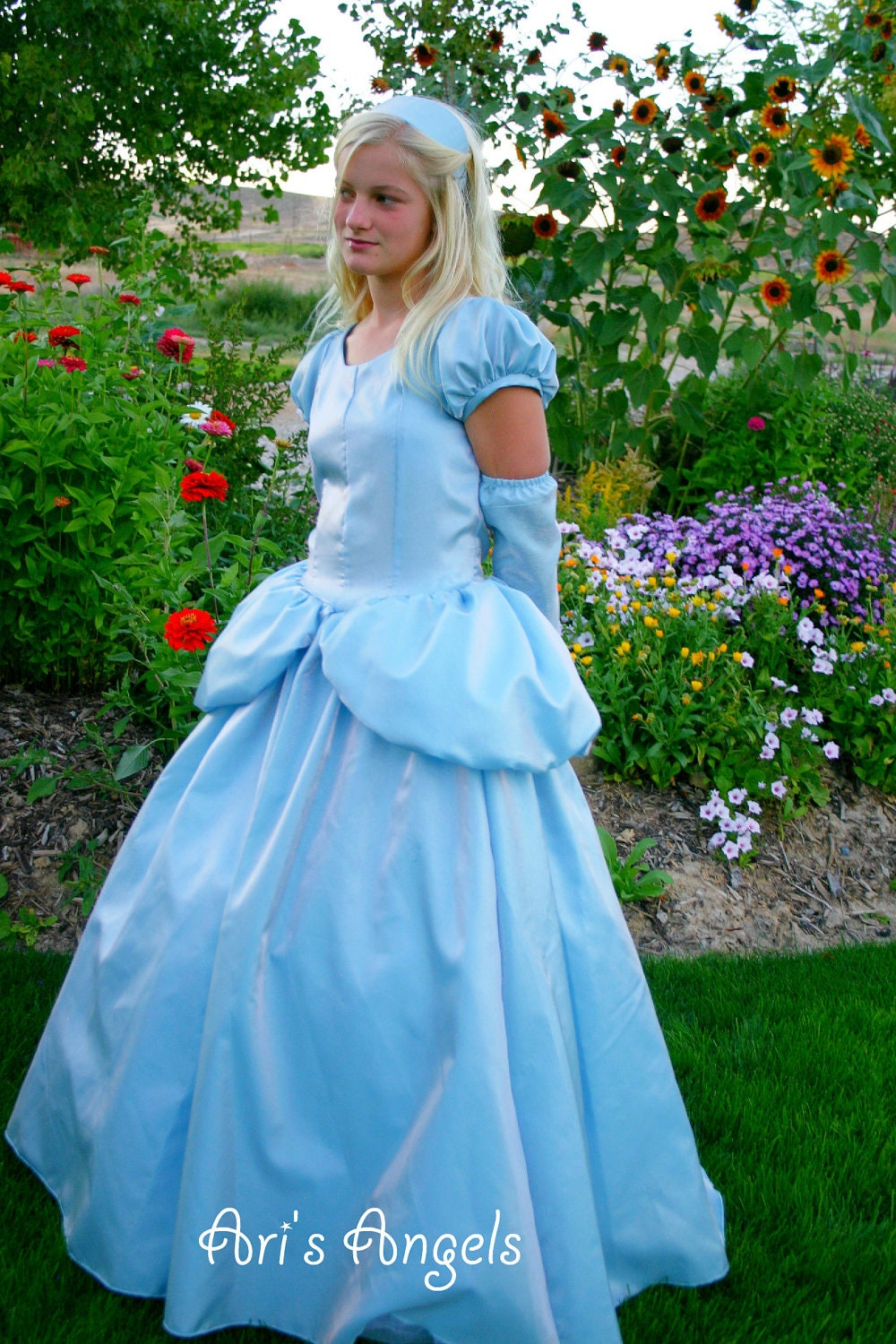 Beautiful BELLE Ball gown in Boutique size 2T to 6X ...
