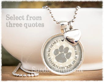 Pet urn necklace etsy pet cremation jewelry pet loss urn necklace pet urn pendant dog urn cat memorial remains necklace aloadofball Choice Image