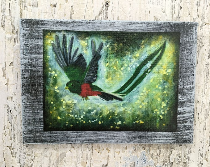 Paradise Bird Rustic Wall Art By Artist Rafi Perez Original Textured Artist Enhanced Print On Wood