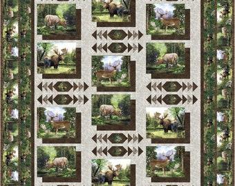 Photo Album Queen quilt kit, Northcott Timberland fabric, The Fabric Addict