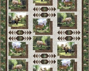Photo Album quilt kit, twin, Northcott Timberland
