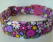 Floral Dog Collar, Dog Collars, Pink, Purple, Yellow, White Flowers on Plum, Puppy Collar, Girl Dog Collar - quot Berry quot