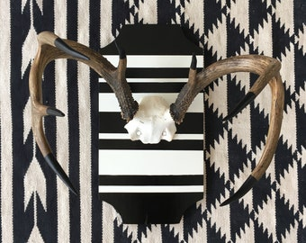 Painted Antlers on Black and White Striped Plaque