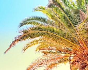 California Palm Tree Photo Print. Catalina Island. Minimalist. Modern. Cali Wall Art. Birthday Gift. Nursery Decor. Home Decor. Blue. Yellow