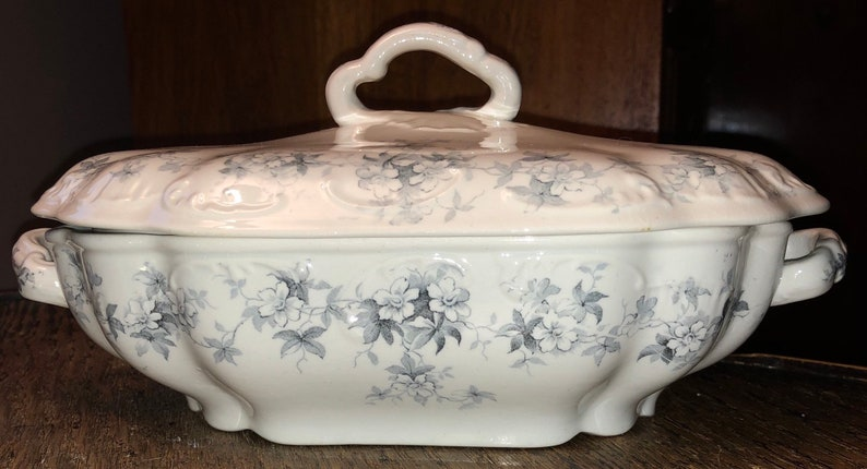 English Victorian Transferware E M And Co Covered Dish Tureen image 0
