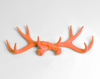 Chic Rustic Wall Hook - Tangerine Faux Antler Decor - Antler Wall Hook - Deer Antler Decorations / Jewelry Organizer by White Faux Taxidermy