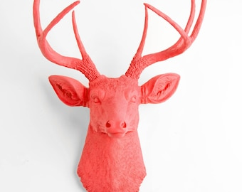 Taxidermy Deer Head Mount - The Molly - Coral Resin Deer Head, Coral Resin Stag by White Faux Taxidermy