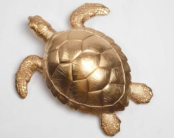 The Raphael - White Faux Taxidermy Wall Decor - White Faux Taxidermy  - Mounted Turtle Body Decorations - Faux Taxidermy