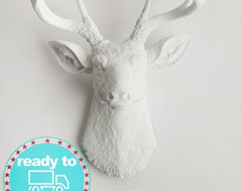 Beautiful Faux Taxidermy Deer Head Wall Decor. From White, To Black, U0026 Glitter  Antlers In Between. By White Faux Taxidermy (Mon Thurs*)