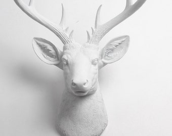 The XL Templeton - White Faux Taxidermy Deer Head - White Faux Deer Head- White Deer Antlers Mounted- Deer Wall Art  Resin Animal Heads