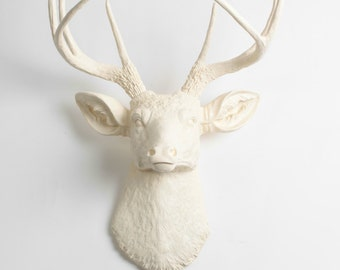 Faux Taxidermy Deer Head in Antique White  - The Tobrin Resin Deer Head by White Faux Taxidermy -  Mounted Antlers - Faux Head Wall Decor
