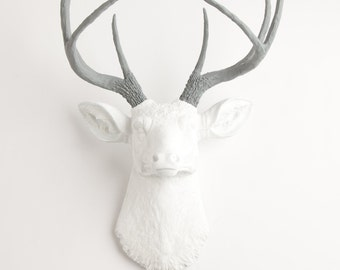 Faux Deer Head Wall Mount - The Helena - White Deer Head W/ Gray Antlers - Resin Stag & Animal Heads by  White Faux Taxidermy
