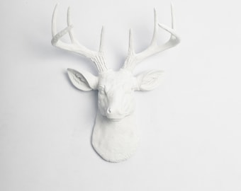 Deer Wall Mount / Fathers Day Gift Idea - The MINI Templeton Deer Decor - White Deer Head Mount - White Resin Deer Head & Antlers Mounted