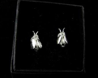 Kiss Me Honey Honey                                                                        - silver bee stud earrings