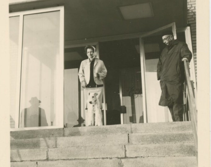 Vintage Snapshot Photo: Composition with Reflections, Windows, Man, Woman, Terrier, 1965 [810734]