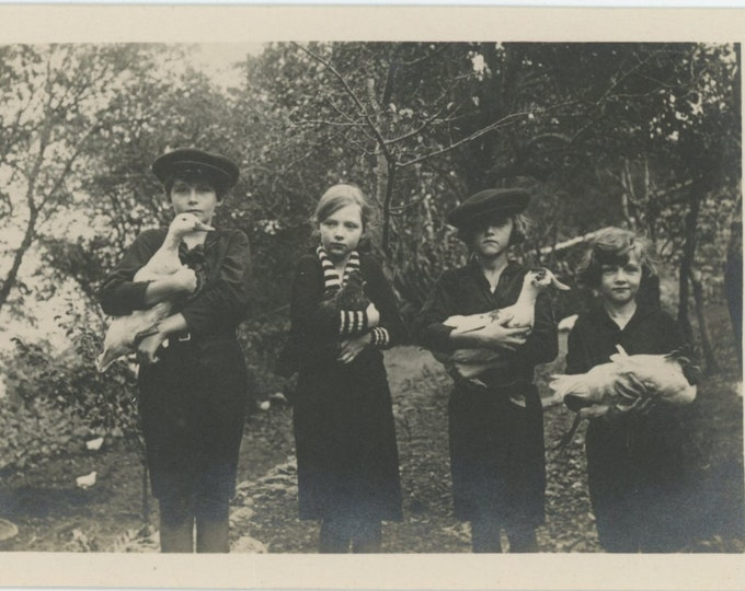 Vintage Snapshot Photo: Kids with Ducks, Geese & Rooster, Italy, 1930s (88715)