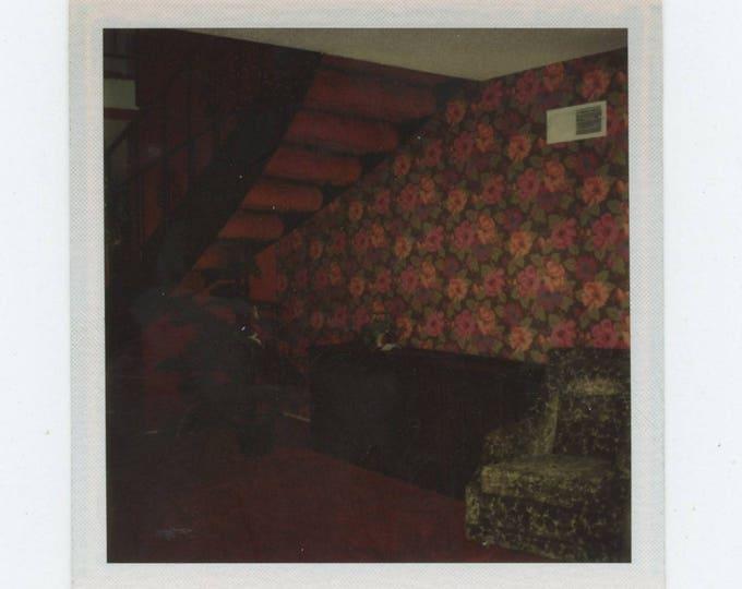 Hallway Wallpaper: Vintage Polaroid SX-70 Snapshot Photo [81646]