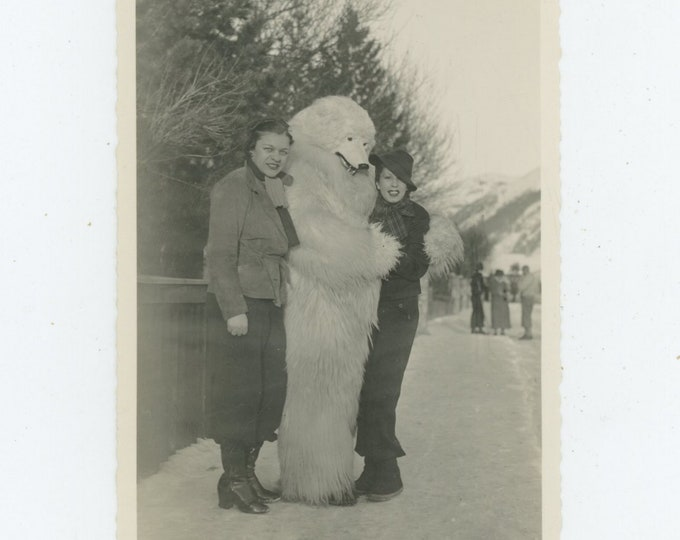 Vintage Snapshot Photo: Polar Bear Souvenir Tourist Souvenir, Celerina, Switzerland, 1930s [89722]