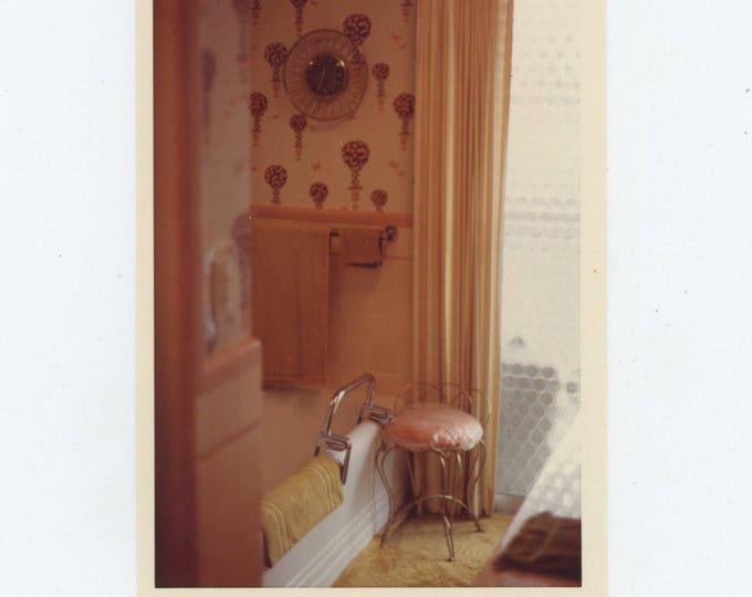 Vintage Snapshot Photo: Bathroom Interior, 1973 [82648]