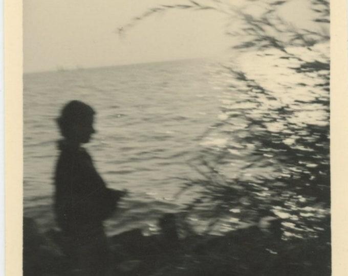 Vintage Snapshot Photo: Silhouette (88704)