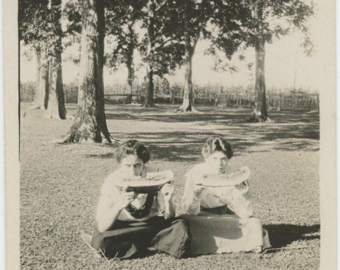 """Vintage Snapshot Photo: """"Our Front lawn Hollie & Eugenia they look awfully hungry, don't they!"""" (87698)"""
