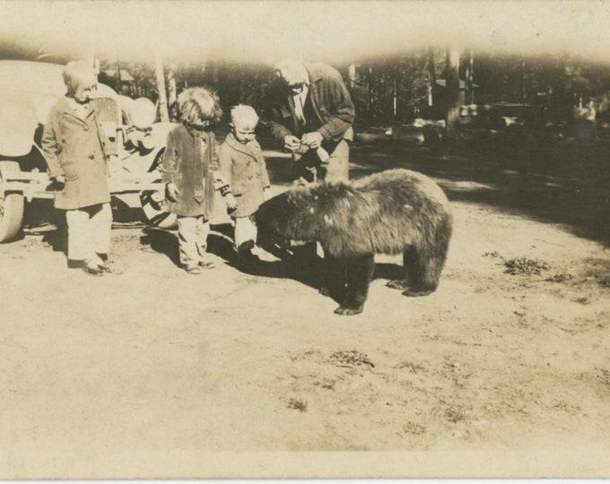 Feeding the Bears: Vintage Snapshot Photo, c1920s (88713)