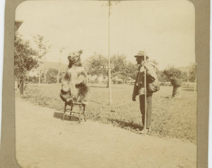 Vintage Snapshot Photo: Itinerant Dancing Bear Show, Early 1900s (88713)