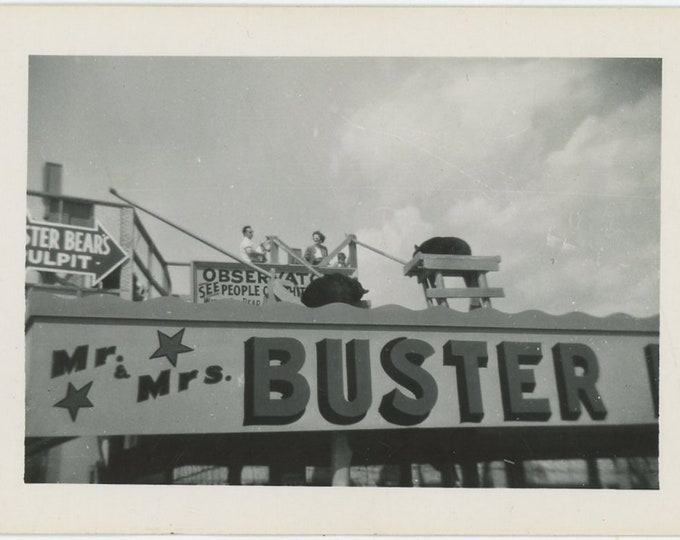 Mr. & Mrs. Buster Bear Roadside Attraction, c1940s-50s: Vintage Snapshot Photo [89721]