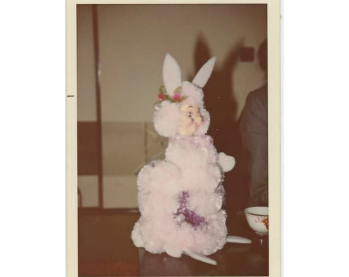 Scary Bunny: Vintage Snapshot Photo, 1973 [85675]
