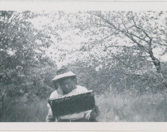 BeeKeeper: Vintage Snapshot Photo [811745]
