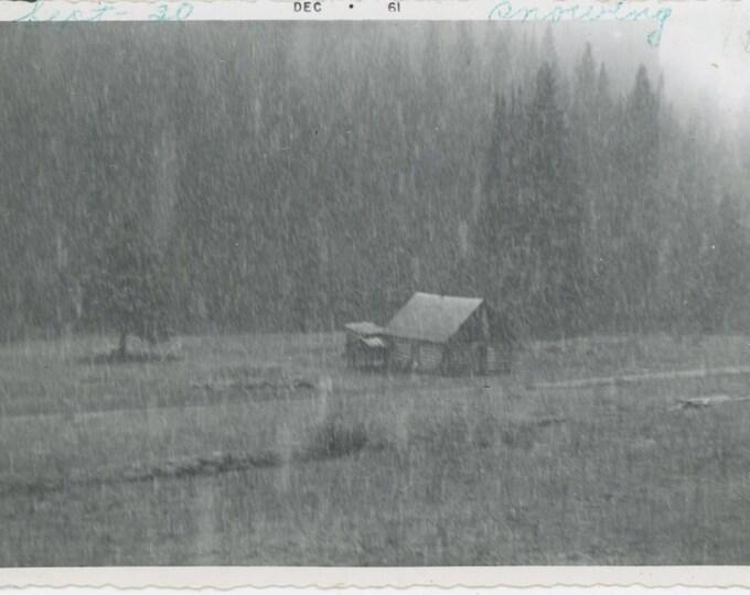 "Vintage Snapshot Photo: ""Sept. 30--Snowing, 1961""  [89728]"