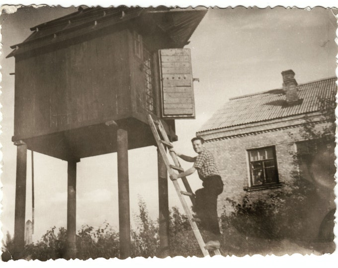 Vintage Snapshot Photo: Elevated Storeroom, c1950s[811737]